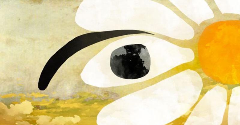 infección en el ojo remedios caseros