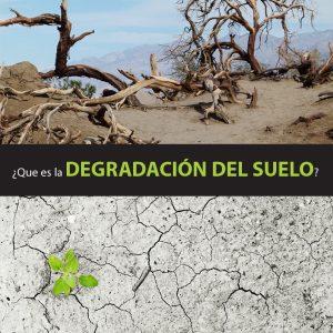 Degradaci n del suelo causas consecuncias y soluciones for Que es la clausula suelo de los bancos