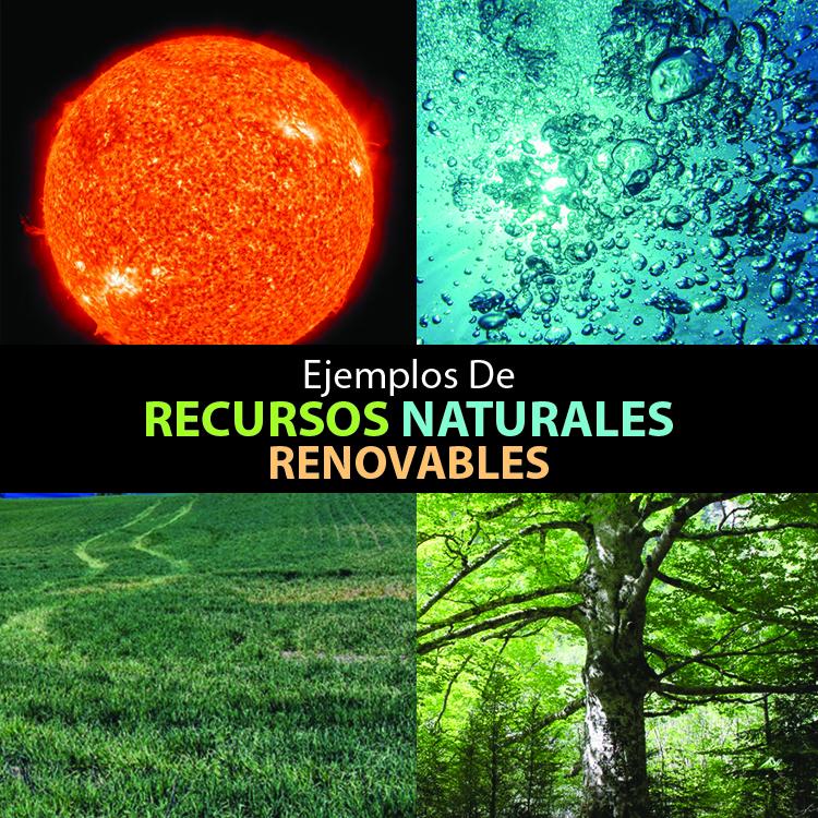 ejemplos-de-recursos-naturales-renovables - Mente y Cuerpo