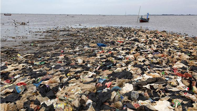 Resultado de imaxes para imagenes de la biocontaminacion en los mares